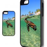 iPhone Starting out Life in Palm Beach Loggerhead Sea Turtle